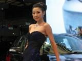 Фотовыставка автомобилей Китая