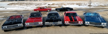 mecum chevelle collection