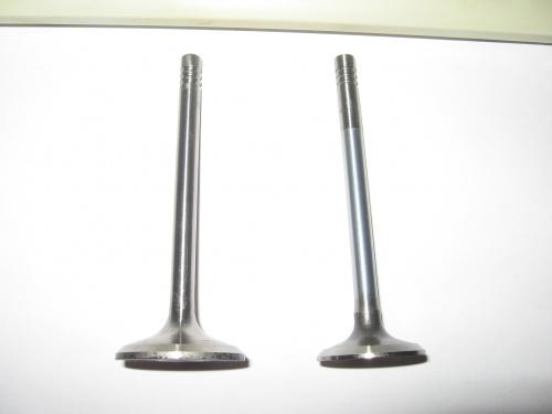 Впускной и выпускной клапаны